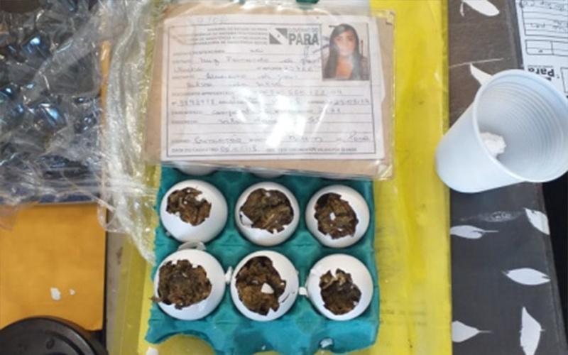 Mulher tenta entrar com 'ovos de maconha' em prisão do Pará