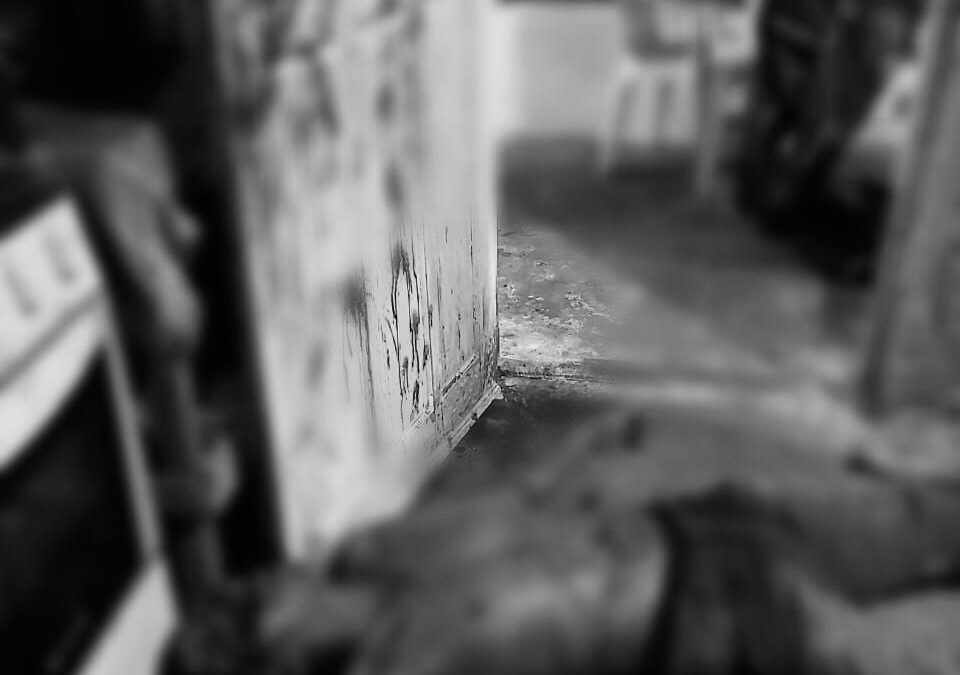 Homem mata companheiro de trabalho na zona rural