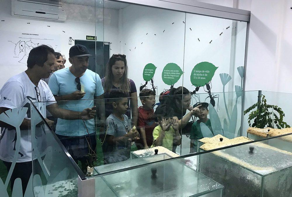 Parque Zoobotânico Vale inaugura formigueiro em programação do mês das crianças