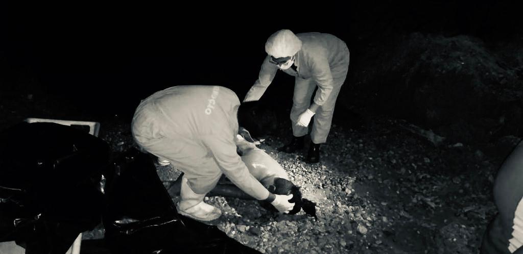 Jovem morre afogado nas águas do Rio Parauapebas