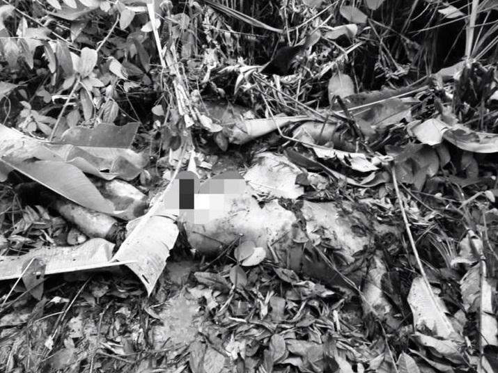 Em Parauapebas, corpos sem a cabeça e em estado de decomposição são encontrados