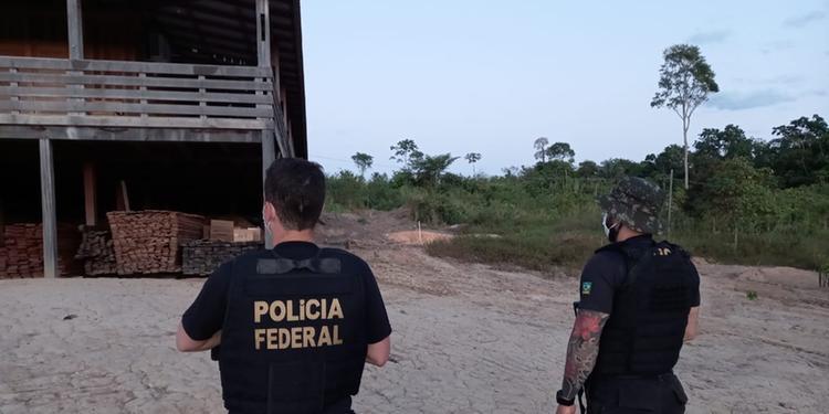 Polícia Federal faz operação contra madeira ilegal no Pará
